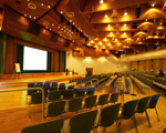 Image of Web Conferencing Auditorium AVL Consultant